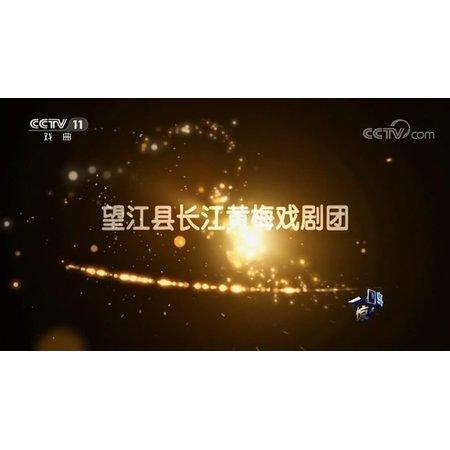 安庆市望江长江黄梅戏剧团